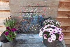bloemen in kruiwagen 60 x 90 op hout € 85